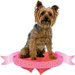 Silky Terrier T-Shirt - Valentines Day