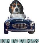 LOL Beagle