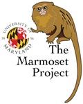 Marmoset Project