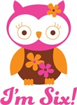 6th Birthday Owl Retro Tees For Kids