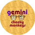 Gemini Christmas Gifts