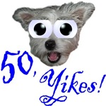 50th Birthday Gifts, wide eyed dog & 50, Yikes!