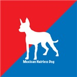 Mexican Hairless Dog Red White & Blue