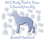 Learned From My Scottish Deerhound