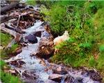 Mountain Goat & Stream