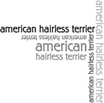 American Hairless Terrier T-shirts and gifts