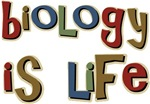 Biology is Life Pun Science Major T-shirts & Gifts
