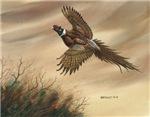 Dave Bartholet Wildlife Art