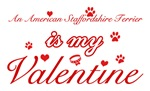 An American staffordshire terrier is my valentines