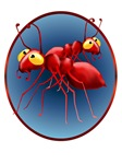 Two Red Ants in a Circle