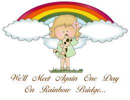 WE WILL MEET AGAIN ONE DAY ON RAINBOW BRIDGE
