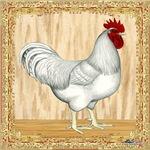 Gold Framed Rooster