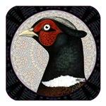 Ringneck Pheasant Circle