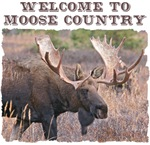 Welcome to Moose Country