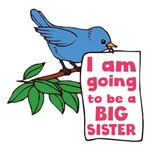 Big Sister Baby Announcement Shirts