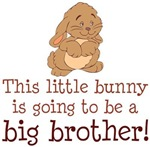 Bunny Big Brother Gifts