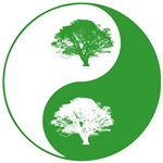Eco Yin and Yang Shirts