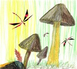 Dragonfly Toadstools