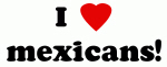I Love mexicans!