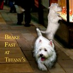 Brake Fast at Tiffany's