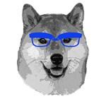 Shiba Inu Nerd /dog