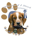 Welsh Springer Spaniel Needs Training