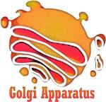 Golgi Olgi Jam Original