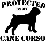Protected by my Cane Corso