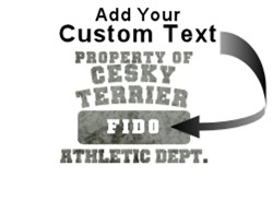 Personalized Property of Cesky Terrier