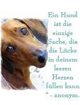 Deutsche Haustier-Geliebte