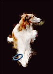 The Borzoi Shop