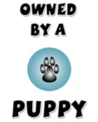 Owned by a Puppy