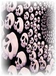 Skulls III