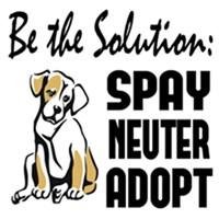Spay, Neuter, Adopt!