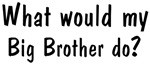 What would <strong>Big</strong> <strong>Brother</strong> do