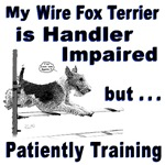 Wire Fox Terrier Agility