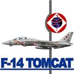F-14 Tomcat VF-102 DIAMONDBACKS