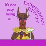 Red Doberman Bitch