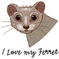 I Love my Ferret
