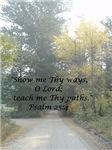 Show Me Thy Ways