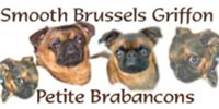 Smooth Brussels Griffon Gifts
