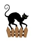 Creepy Black Cat