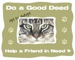 Opt to Adopt a Pet