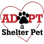 Adopt a Shelter Pet Design