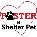 Foster a Shelter Pet Design