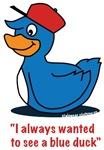 Mr. blue duck, Quacktastic!
