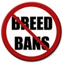 No Breed Bans
