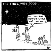 Three Wise Dogs