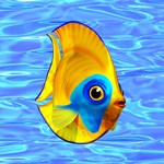 Tropical Fish on Clear Ocean Water