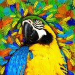 Gold and Blue Macaw Parrot Fantasy